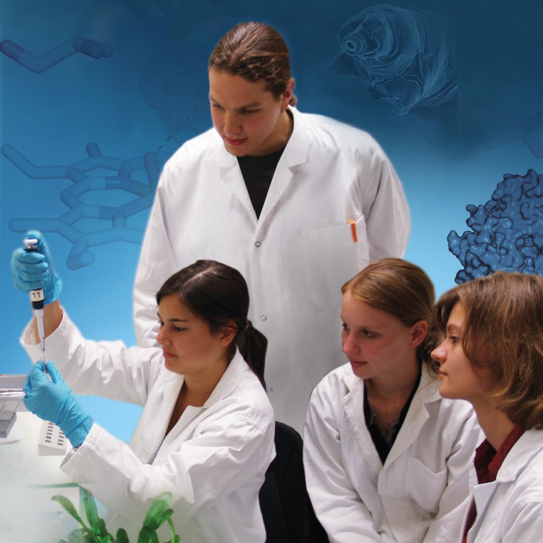 Foto: Technische Biologie / Institut für Biomaterialien und biomolekulare Systeme